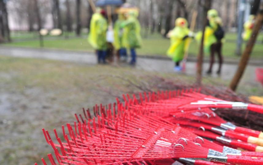 Инструменты для субботника. Фото mos.ru