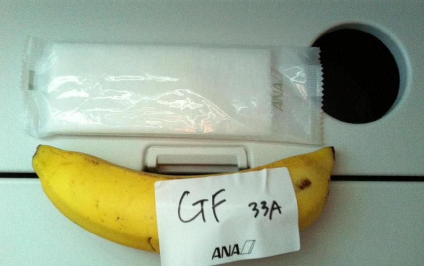 Впроцессе 9-часового перелёта пассажира накормили солью ибананом— Голодные игры