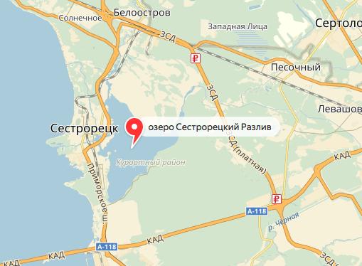 Акция пройдет на дороге, идущей вдоль Сестрорецкого залива. Фото Скриншот Яндекс.Карты