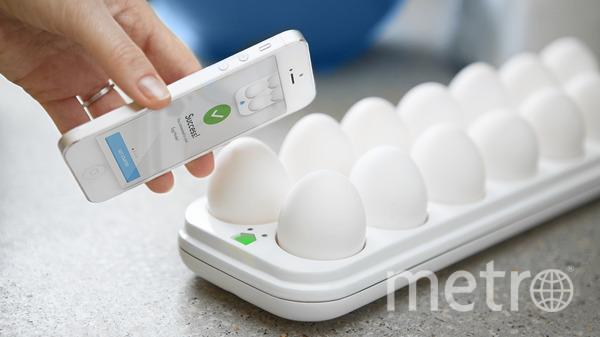"""Quirky Egg. Фото """"Metro"""""""