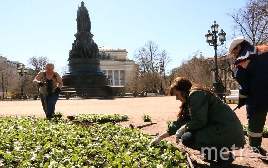 Фото: gov.spb.ru/gov/otrasl/blag.