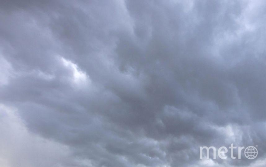 Главный синоптик Гидрометцентра Александр Колесов сообщил о циклоне, который надвигается на Петербург.