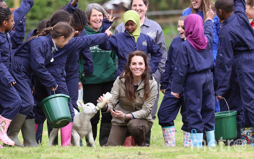 Кейт Миддлтон посетила ферму в Арлингеме. Фото Getty