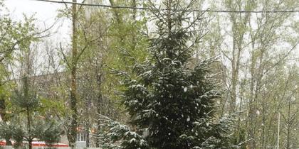Погода в Москве. Фото Instagram/marialovejoy22