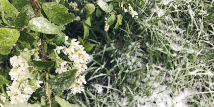 Погода в Москве. Фото Instagram/flysasha