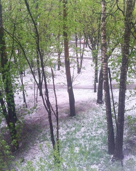 Погода в Москве. Фото Instagram/katyabamba