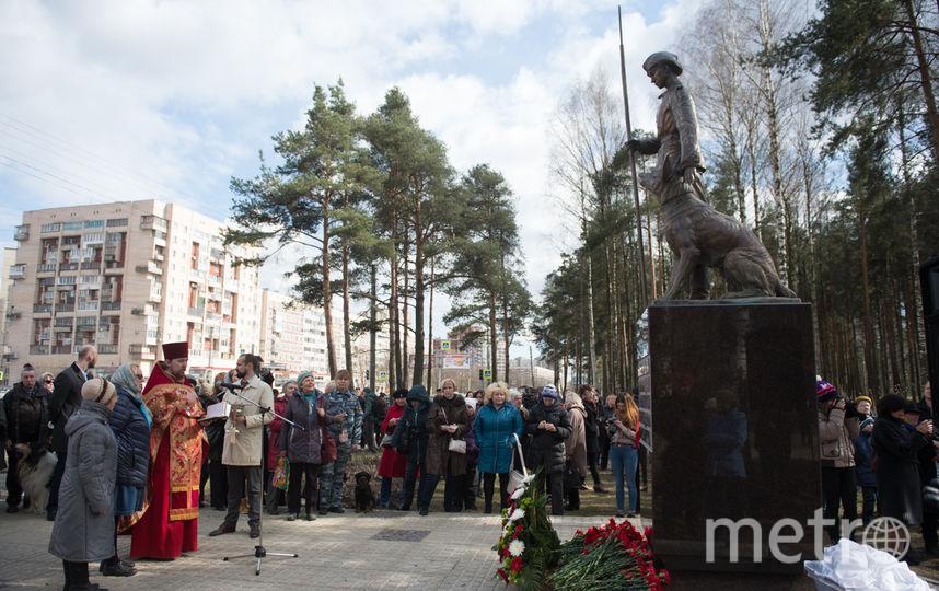 "В парке Сосновка. Фото Святослав Акимов, ""Metro"""