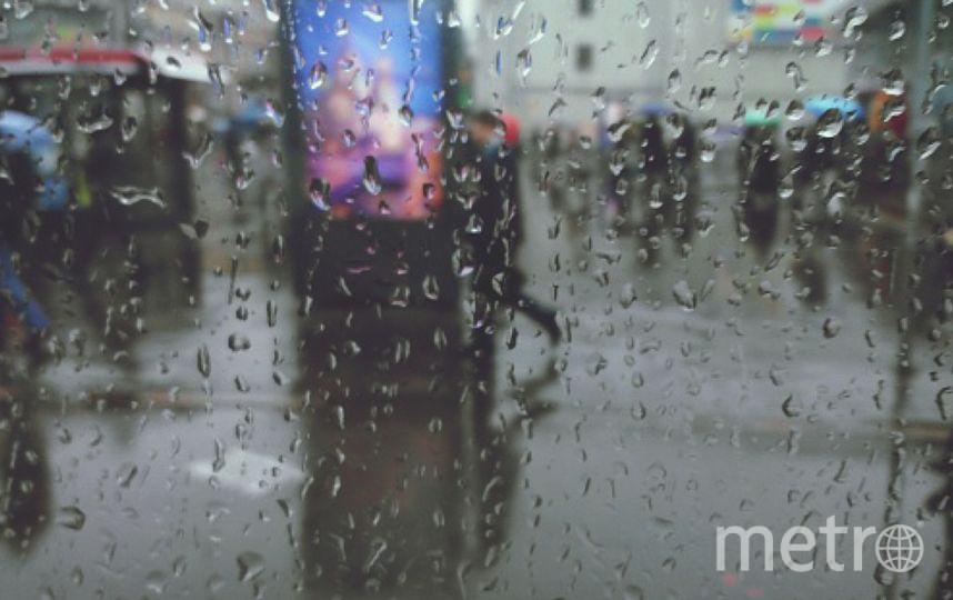 В Петербурге солнечную погоду могут сменить дожди. Фото Getty