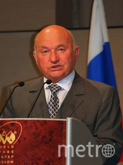 Действия Грузии в отношении Лужкова МИД РФ назвал провокацией. Фото Wikipedia