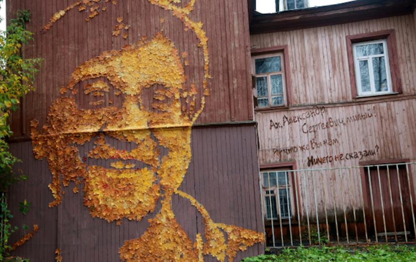 Портрет Шевчука из листьев в исполнении пермского художника Жунева. Фото РИА Новости