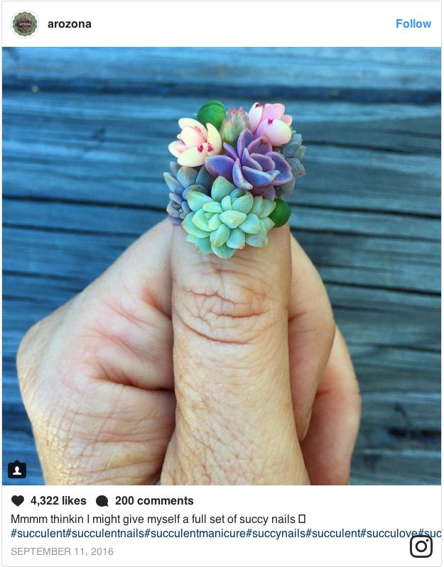 Суккуленты продолжают расти на ногтях | Instagram @arozona.