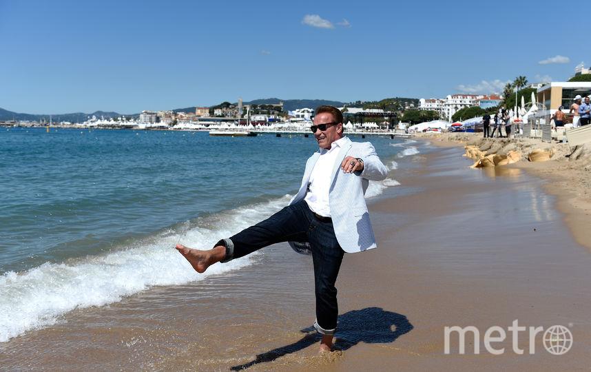 Шварцнеггер вернется к роли Терминатора. Фото Getty