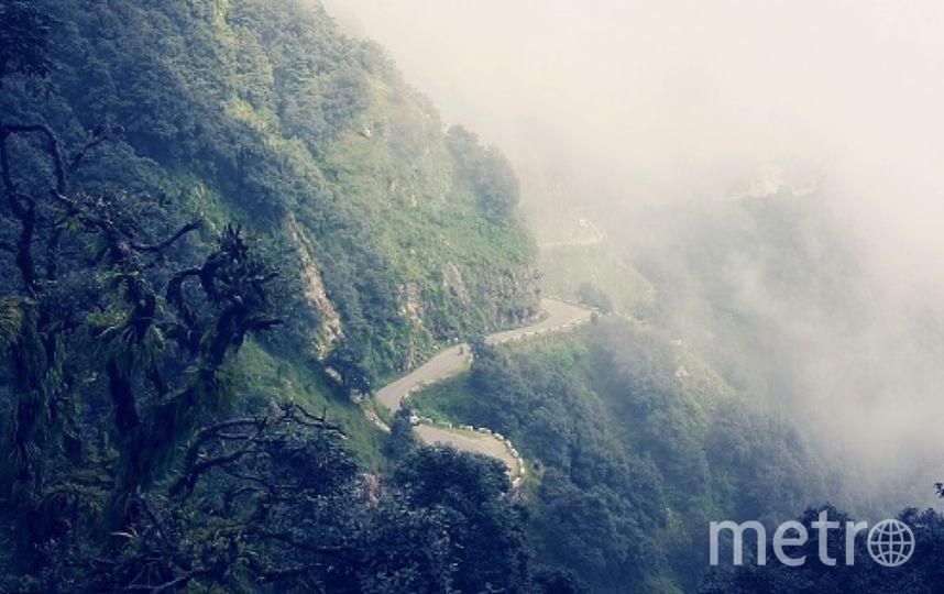 ВИндии автобус упал вущелье: умер 21 паломник