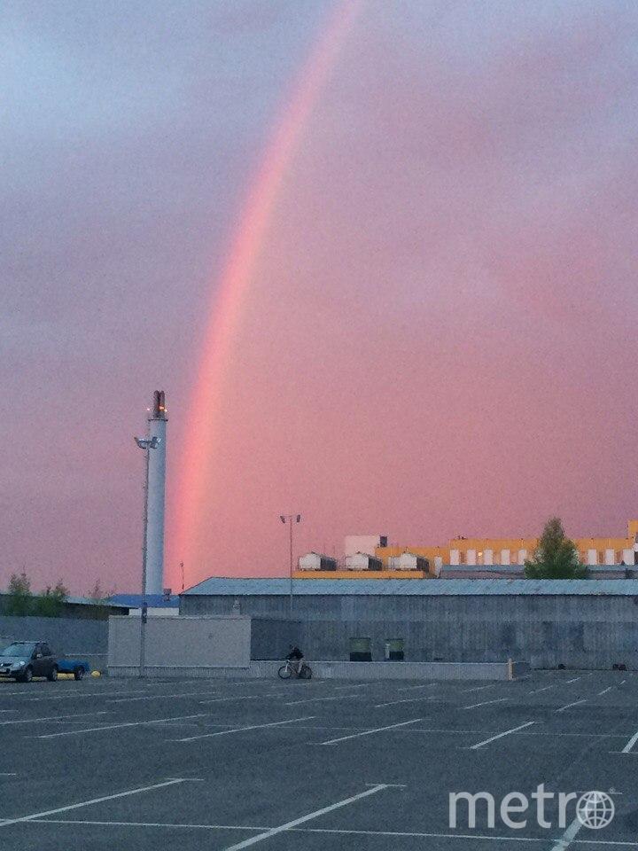 Фото радуги в Петербурге из соцсетей. Фото vk.com