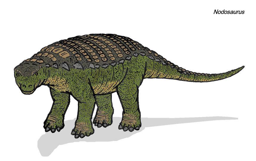 Так выглядел нотозавр. Фото Wikipedia