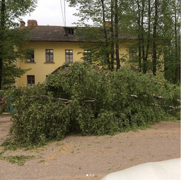 Ураган - дождь и мощный ветер - оставил без света Владимирскую и Ивановскую области. Фото Скриншот Youtube