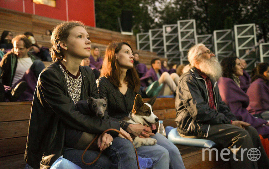 """В открытом кинотеатре парка """"Фили"""" всё лето будут бесплатно показывать фильмы. Фото Василий Кузьмичёнок, """"Metro"""""""