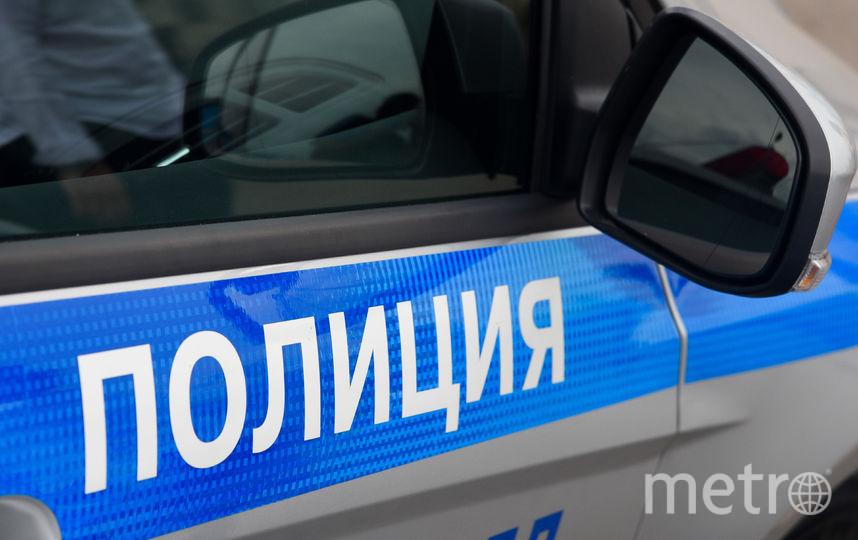 """Полиция. Фото Василий Кузьмичёнок., """"Metro"""""""