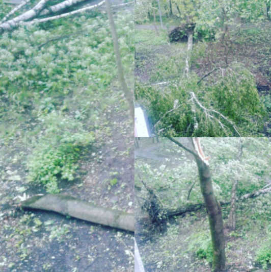 Ураган в Москве. Фото Instagram/sonytabletz271