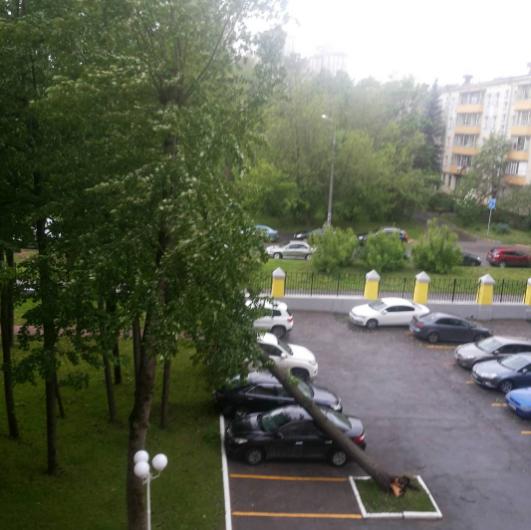 Ураган в Москве. Фото Instagram/ekaterinakolbasova
