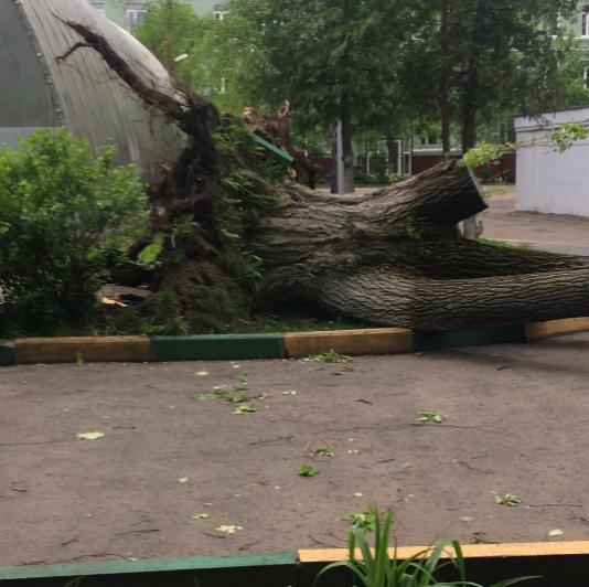 Ураган в Москве. Фото Instagram/andrey_nvrn