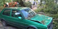 Ураган в Москве: деревья падают на людей и машины
