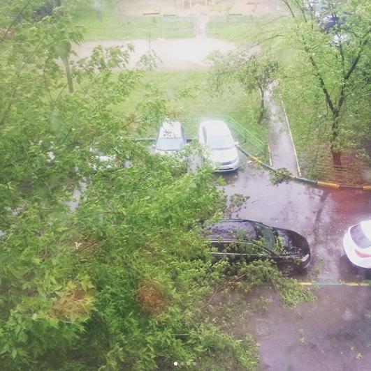 Ураган в Москве. Фото Instagram/elenamed2007