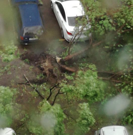 Ураган в Москве. Фото Instagram/doronina_olga86