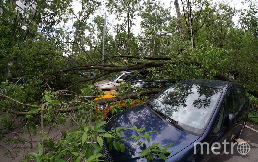Последствия урагана. Двор на Уржумской. Фото Павел Киреев.