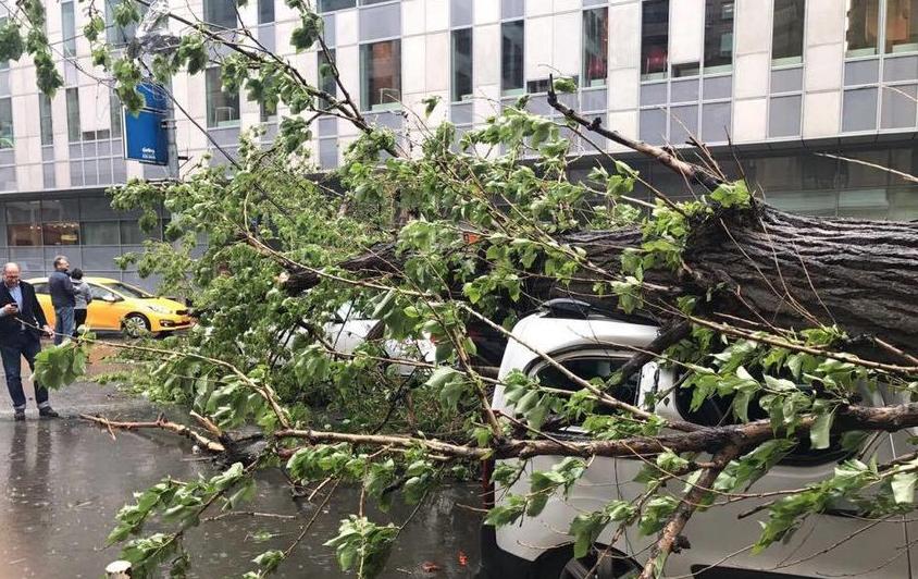"""Последствия урагана в Москве, 29 мая. Фото Максим Полещенко, """"Metro"""""""