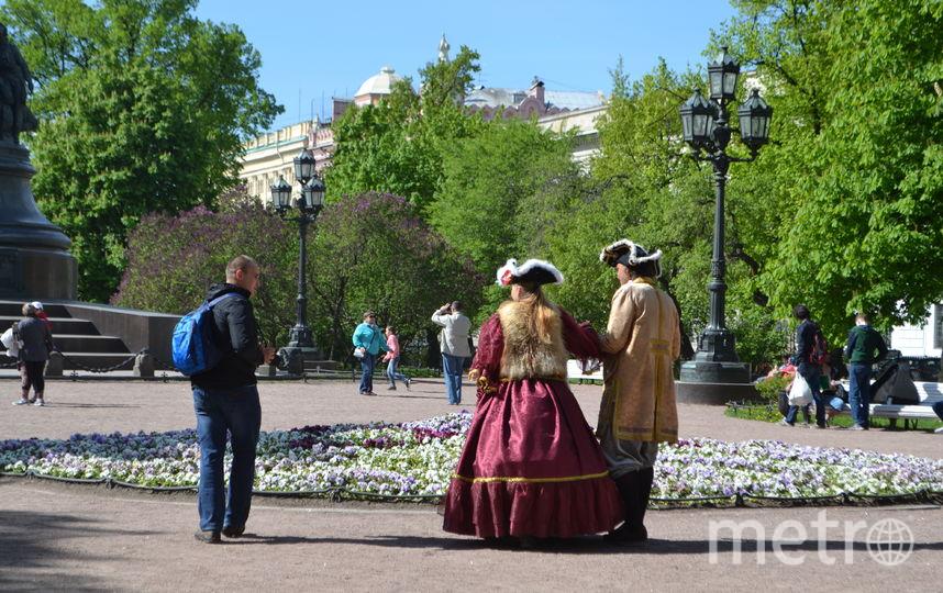 Царственные особы не дают прохода туристам.