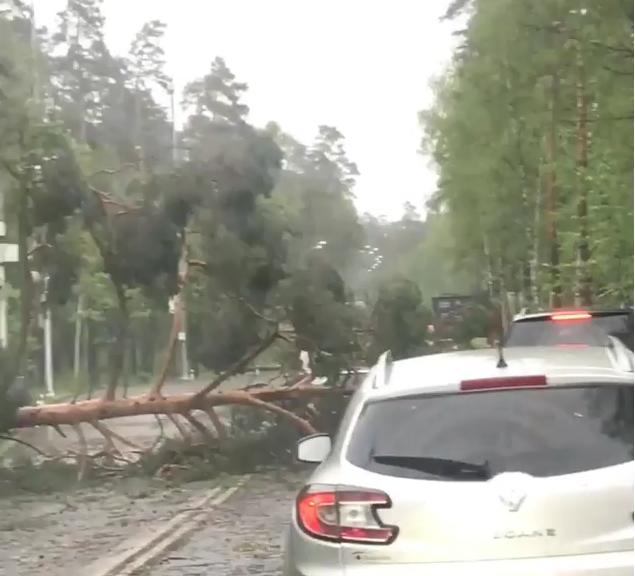 Дима Билан выложил видео урагана.
