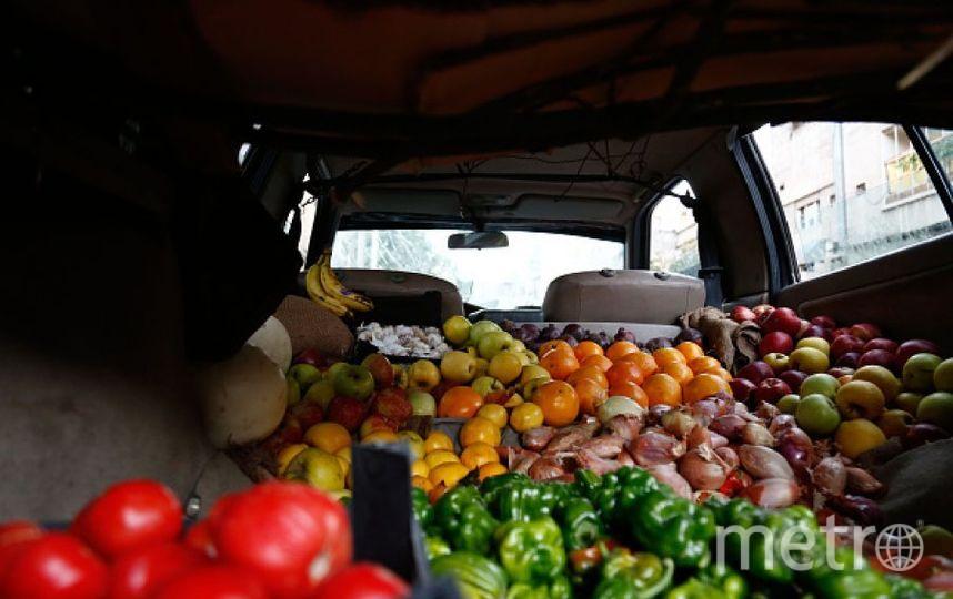 Сирийские фрукты. Фото Getty