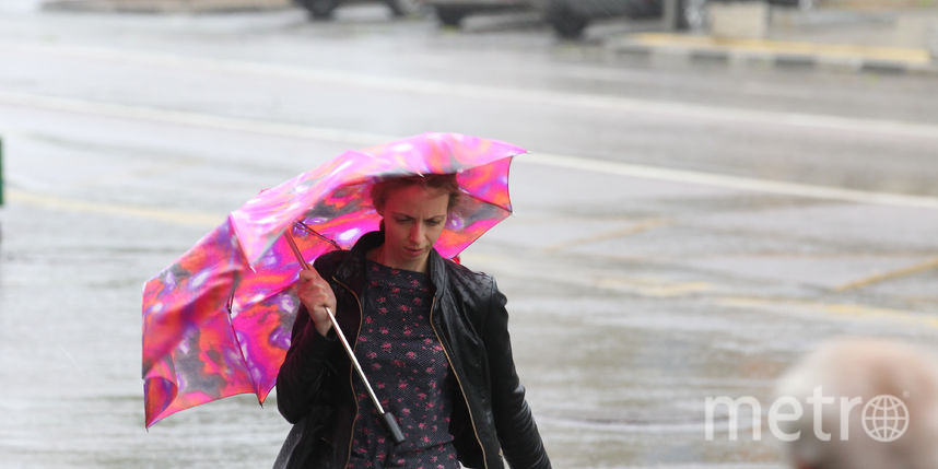 Москва погода на 20 дней