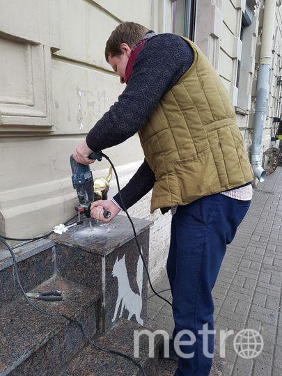 """Предоставлено Предоставлено """"Республикой Кошек""""."""