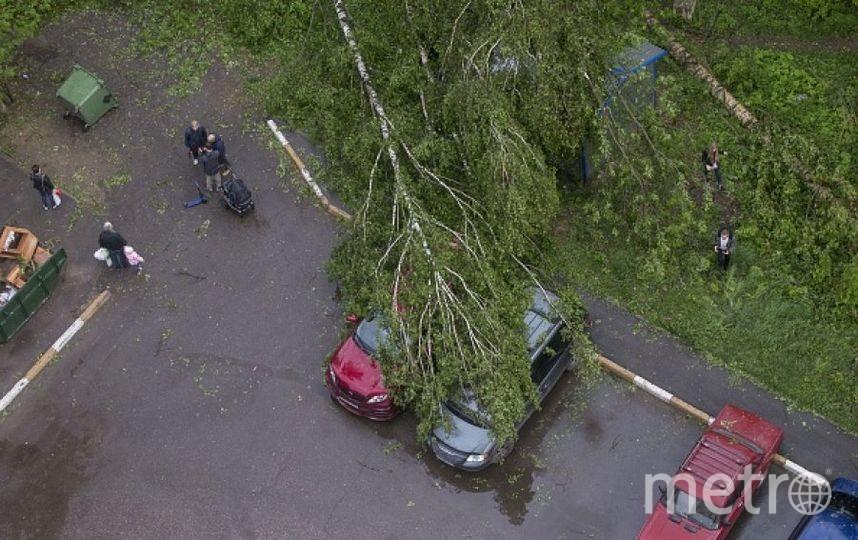 Последствия урагана в Москве. Фото Getty