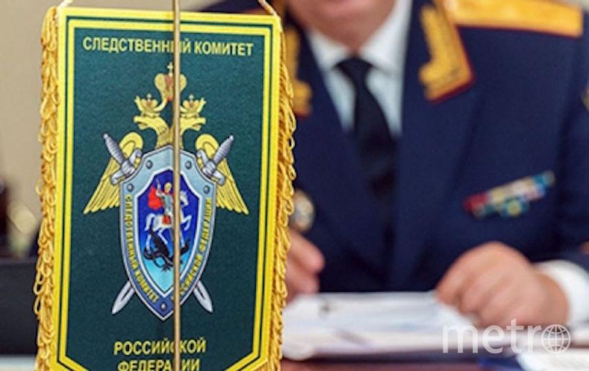 nsk.sledcom.ru.
