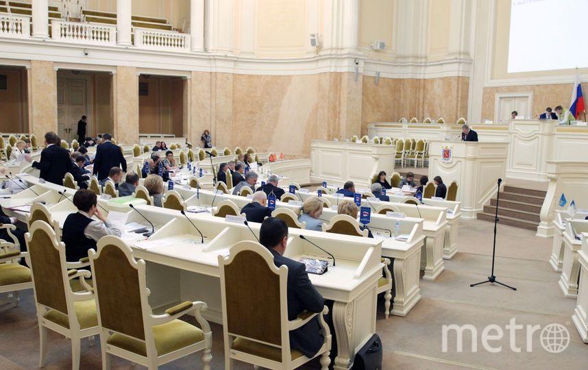 В ЗакСе не поддержали инициативу увеличить возраст молодых матерей, имеющих право на единовременную выплату. Фото все - assembly.spb.ru