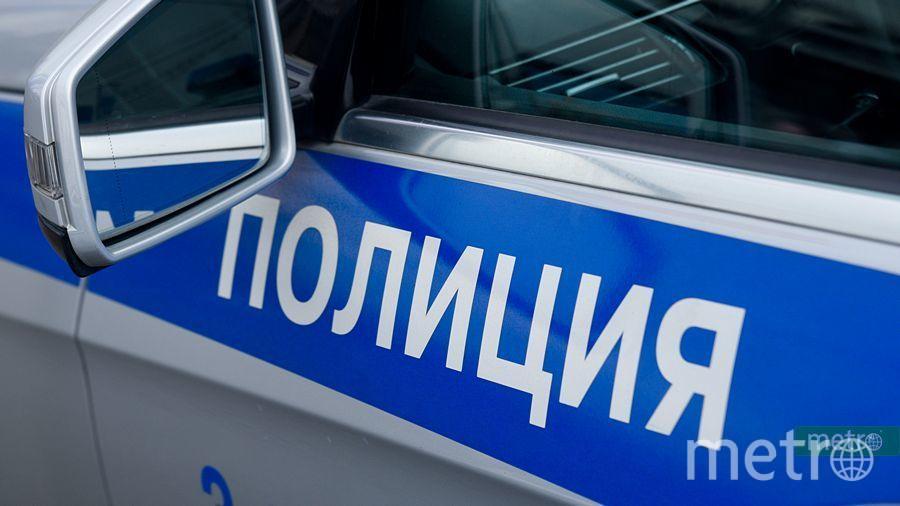 """Сотрудники полиции задержали злоумышленника. Фото Василий Кузьмичёнок, """"Metro"""""""