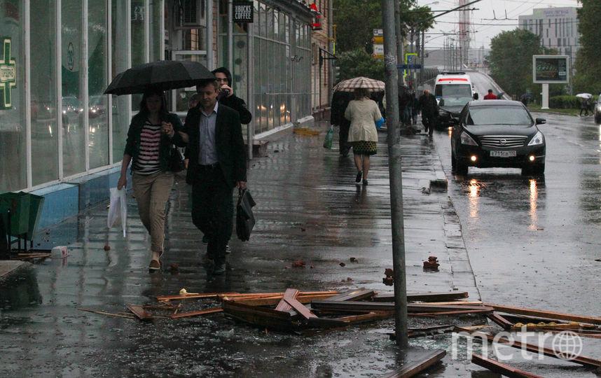 """Более 25 млн рублей выплатят москвичам после урагана. Фото Василий Кузьмичёнок, """"Metro"""""""