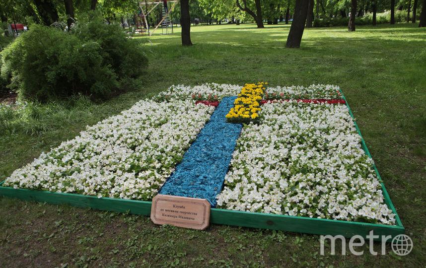 """Международный фестиваль """"Императорские сады России""""."""