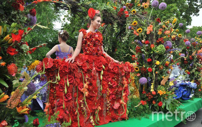 Фестиваль цветов в Петербурге - фотоотчет. Фото Все фото - Святослав Акимов