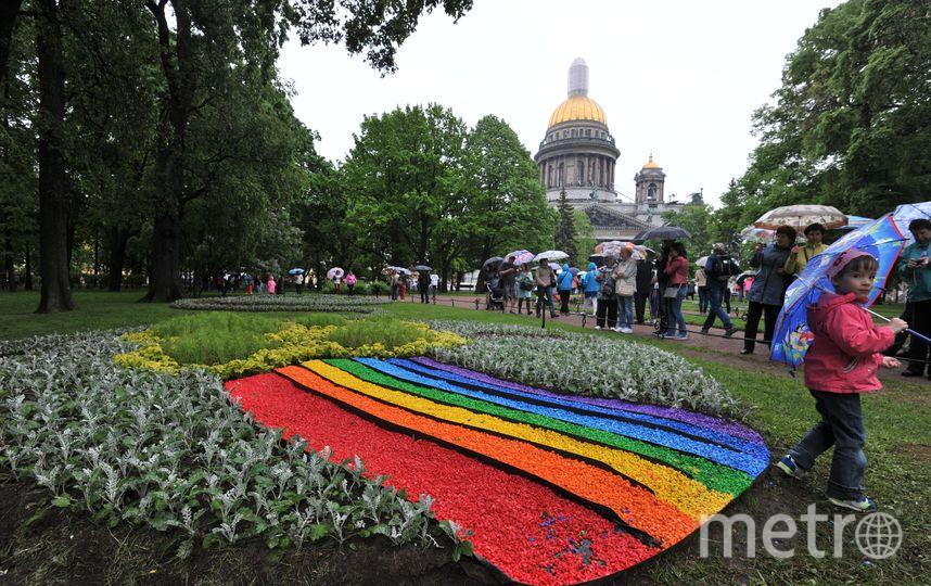 Фестиваль цветов в Петербурге - фотоотчет.