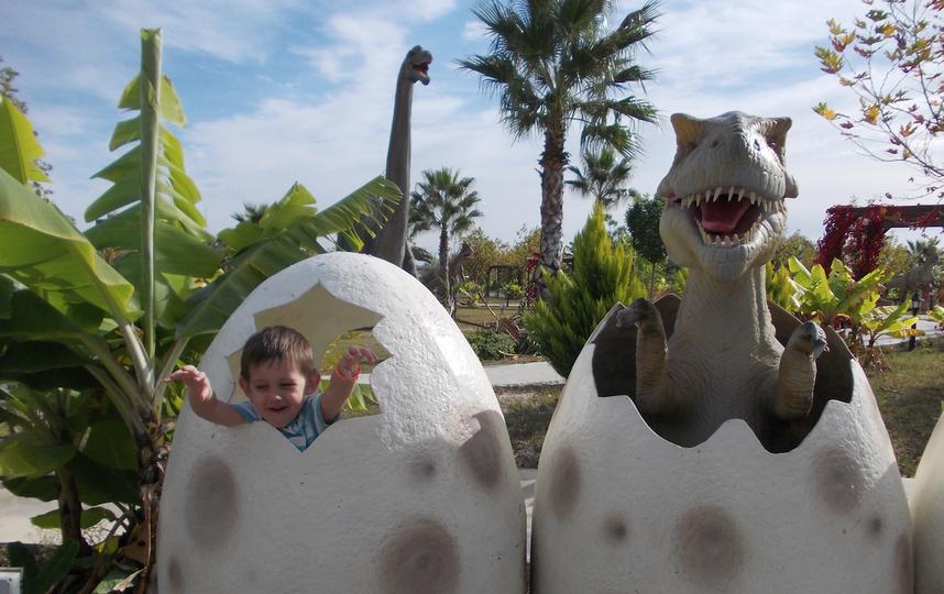 На фото сын в парке Динозавров под Анталией. Ему так понравилось, что не хотел уезжать. Фото Татьяна Иванова.