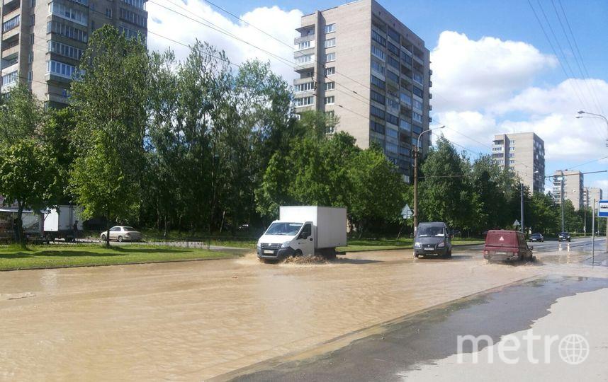 ВПетербурге затопило улицу Турку из-за прорыва трубы