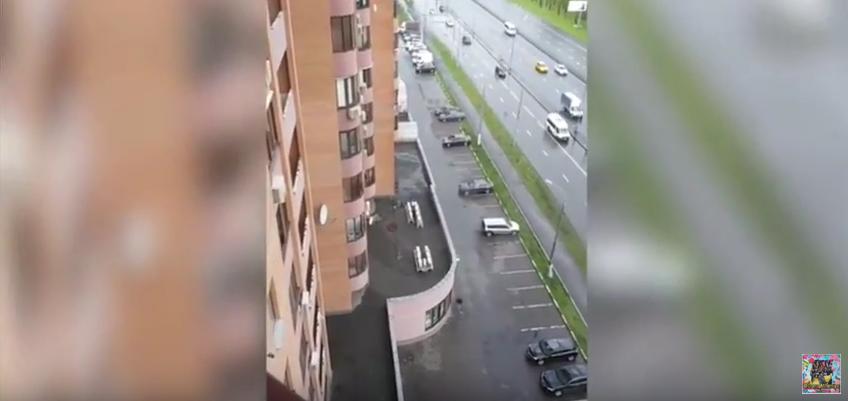 Видео последних часов Илоны Новоселовой появилось в Сети. Фото Скриншот Youtube