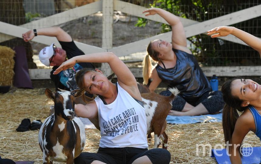 """""""Козлиная йога"""". Фото AFP"""