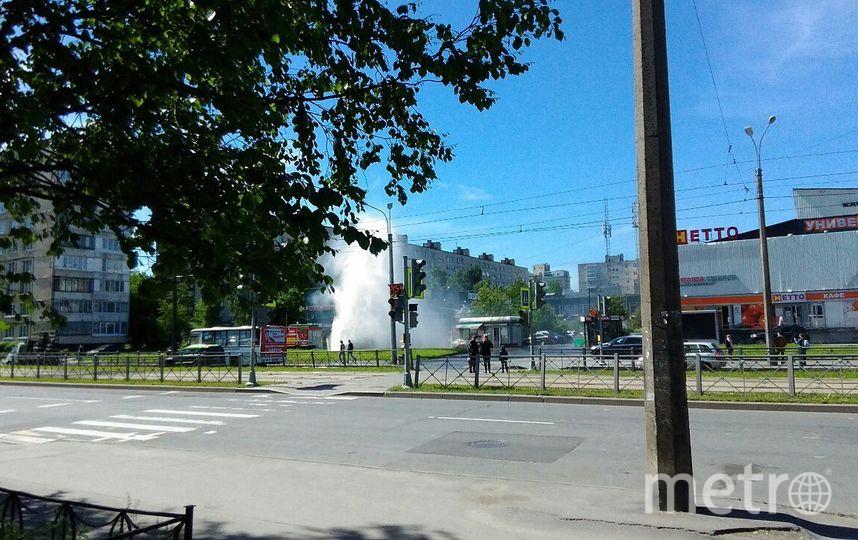 На Купчинской. Фото vk.com/spb_today, vk.com