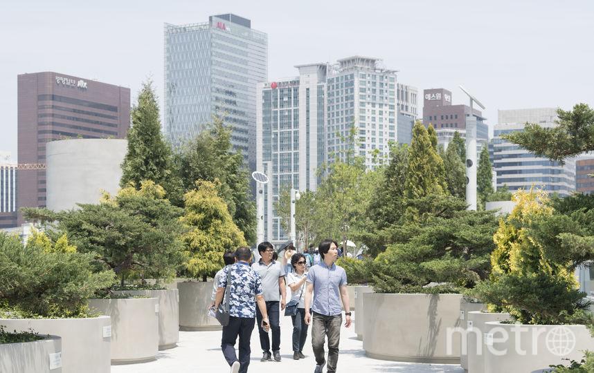Жители Сеула смогут ходить по такому мосту круглые сутки. Фото Ossip van Duivenbode