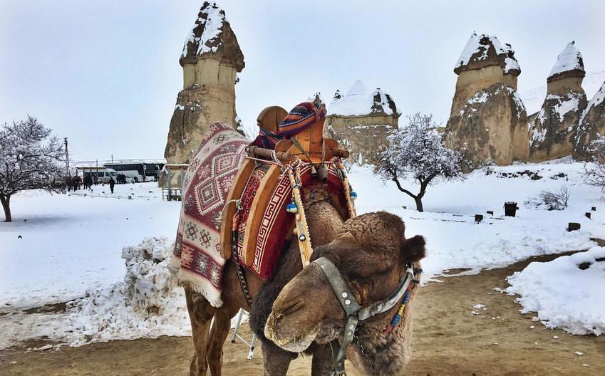 Тепло ли тебе в Турции? Фото Светлана Калатурская.